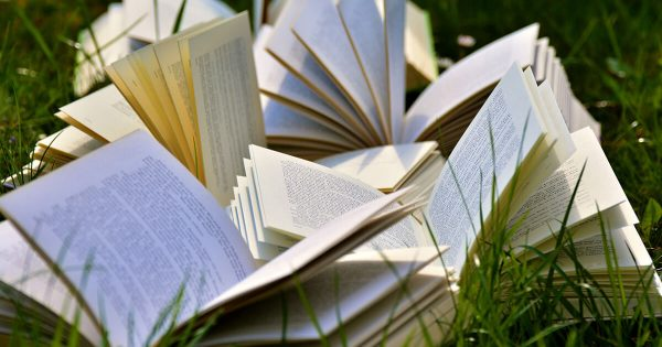 Pile of Books Open On Grass